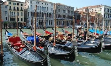 Venedig, natur og lokalområdet