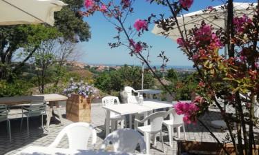 Restaurants Camping Mar Y Sierra in Le Marche