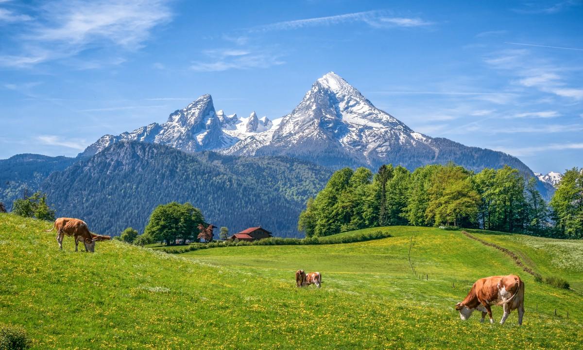 Groenne naturlandskaber med bjerge i baggrunden