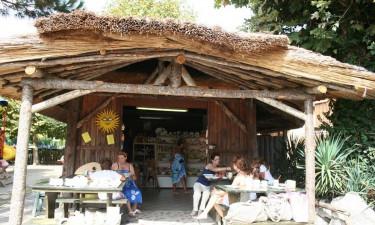 Tahiti Lux Camp