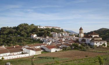 Estepona og området