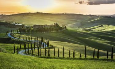 Vinmarkerne i Toscana i Italien