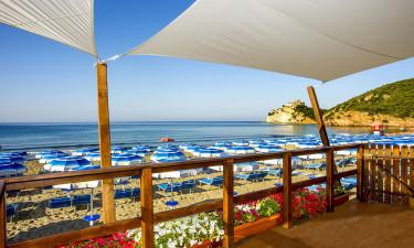 Flot swimmingpool og privat strand