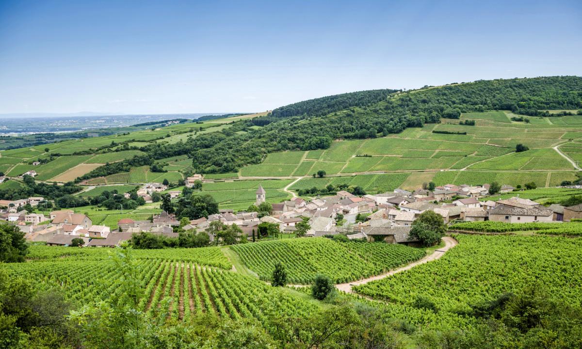 Smukt landskab i Loire, Frankrig