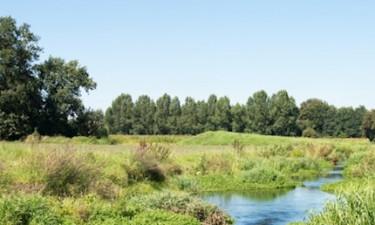 Udforsk det hollandske landskab til fods eller på cykel
