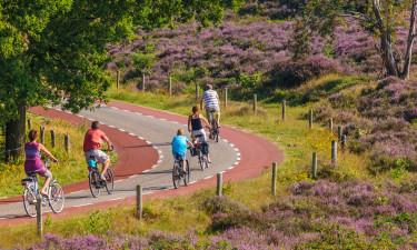 Gelderland består af 4 unikke områder