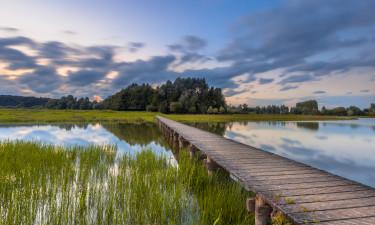 Den bedste familieferie i Holland
