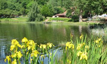 Opdag naturen omkring Bitche L'etang de Hasselfurth