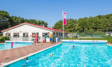 Hyggeligt udendørs poolområde