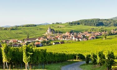 Naturlandskab i Alsace