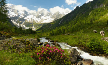 Styria camping Austria
