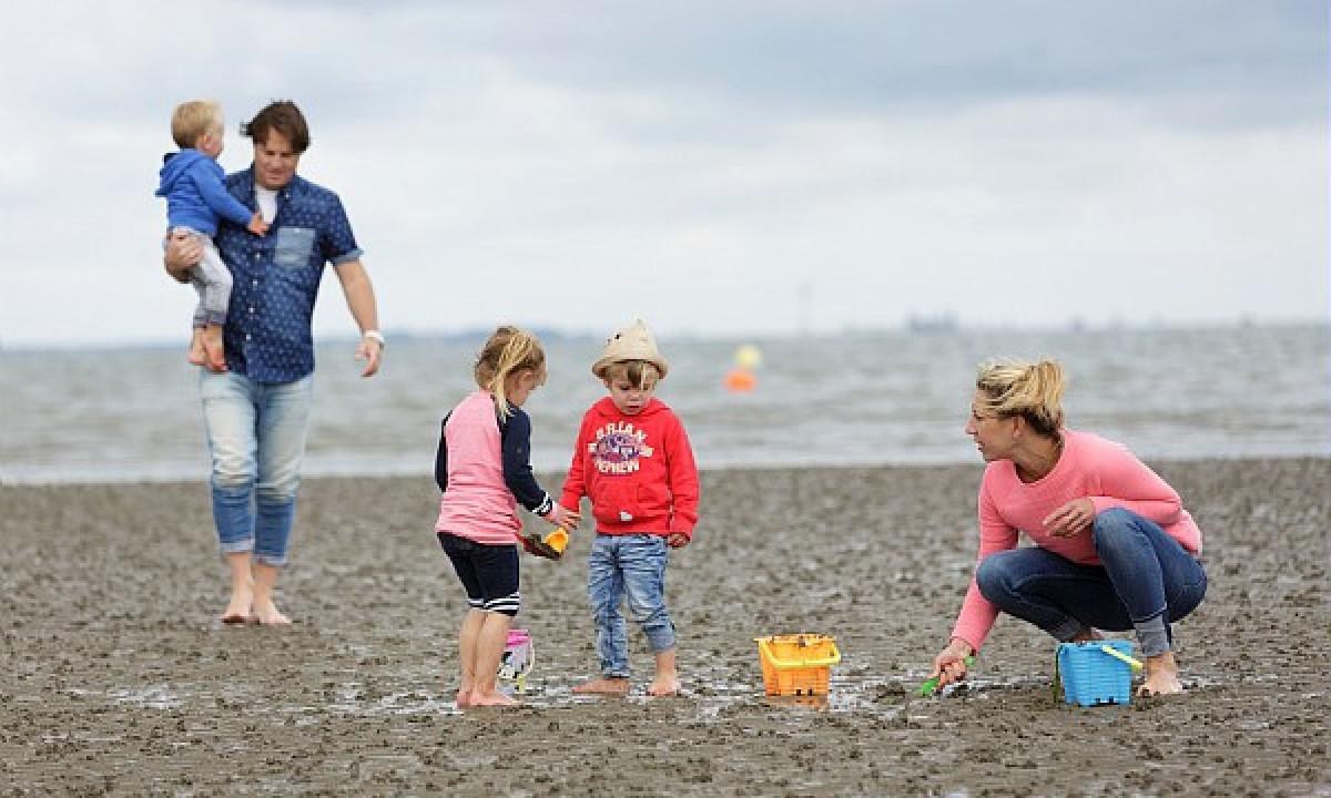 Vadehavet - Familietur i mudderet