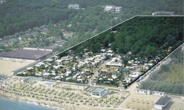 Generelt om Camping Villaggio Pineta