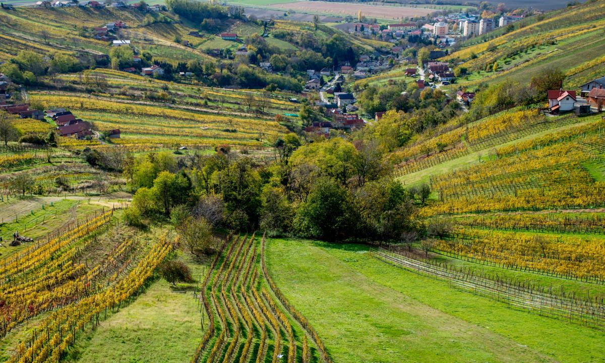 Lendava - Den smukke dal i byen