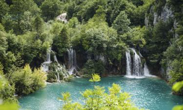 Nationalpark i Istrien i Kroatien