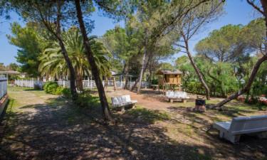 Hav sandstrand som din baghave hos Toscana Bella