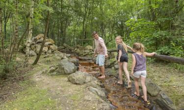 Udforsk nationalparken Hoge Kempen samt attraktioner i området