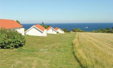 Boesvang - Grønne område lige uden for boligen