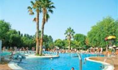 Tropisk poolområde