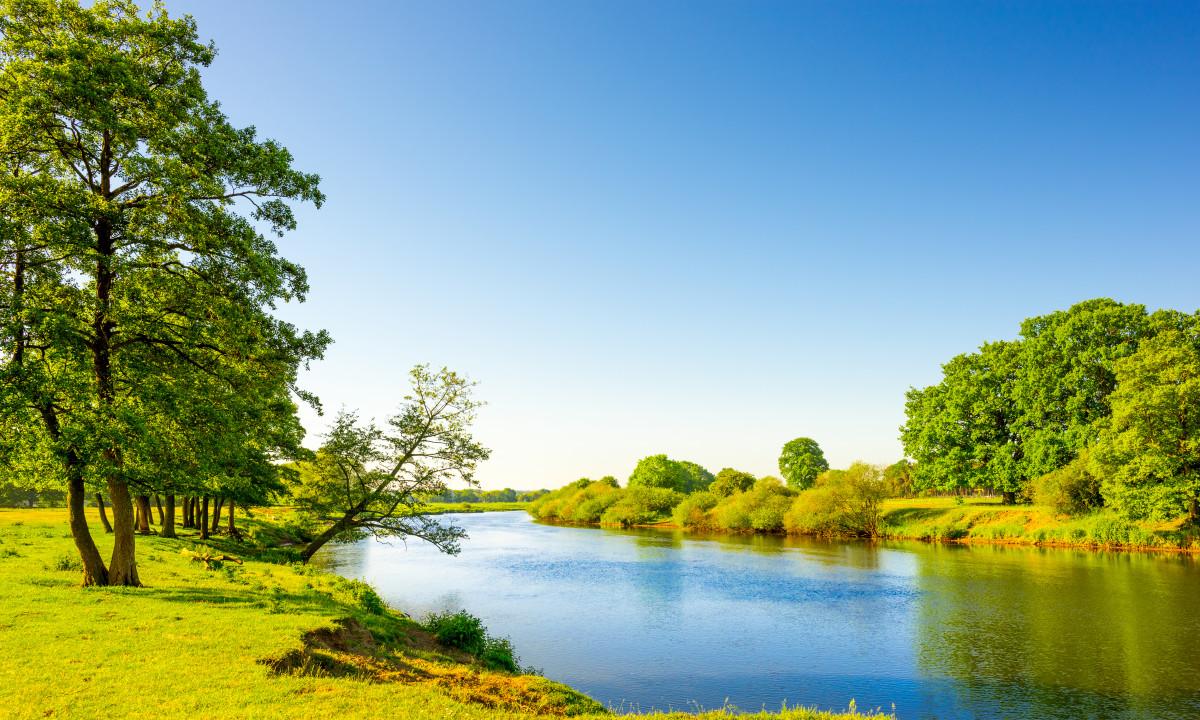Niedersachsen - Søbred omgivet af grøn natur