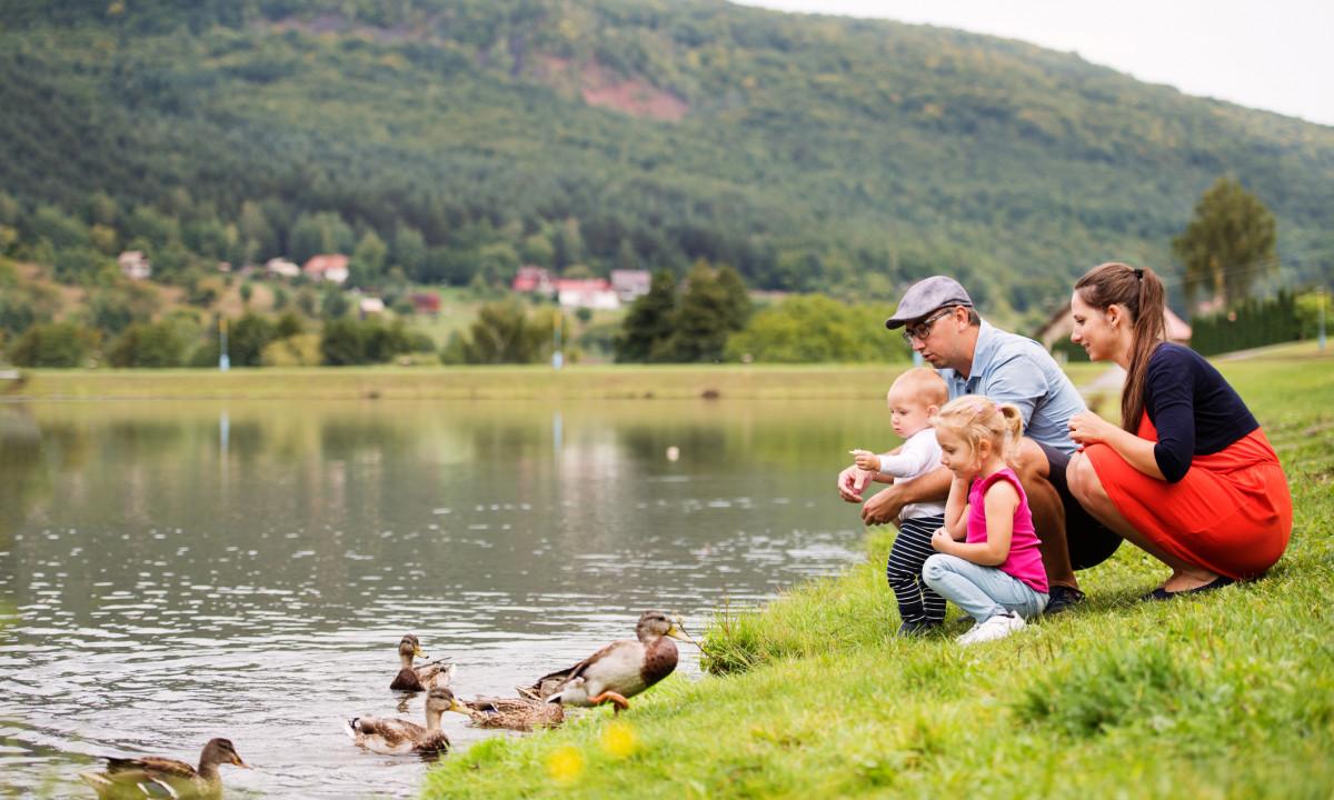 Pause ved sø