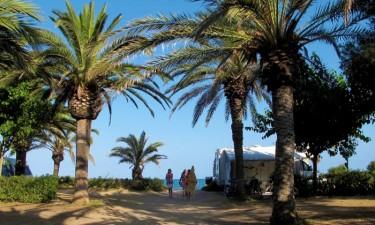Camping La Torre Del Sol – Costa Dorada