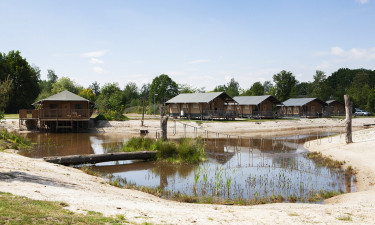 Camping Sallandshoeve
